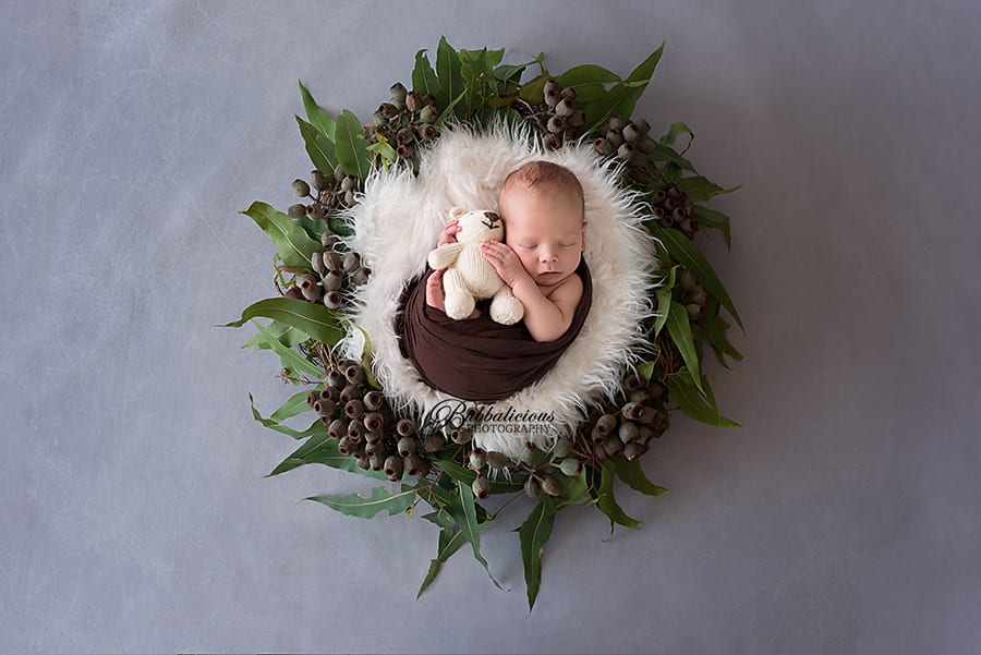 Newborn posed with gum nuts and leaves - Sunshine Coast Gympie Newborn Photographer