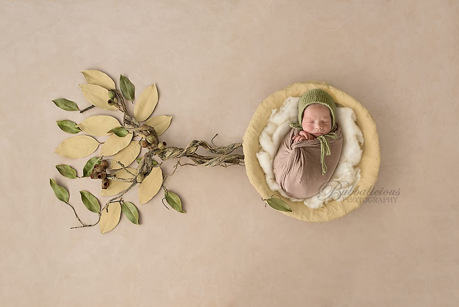 Newborn posed with leaves and gum nuts - Sunshine Coast Gympie Newborn Photographer