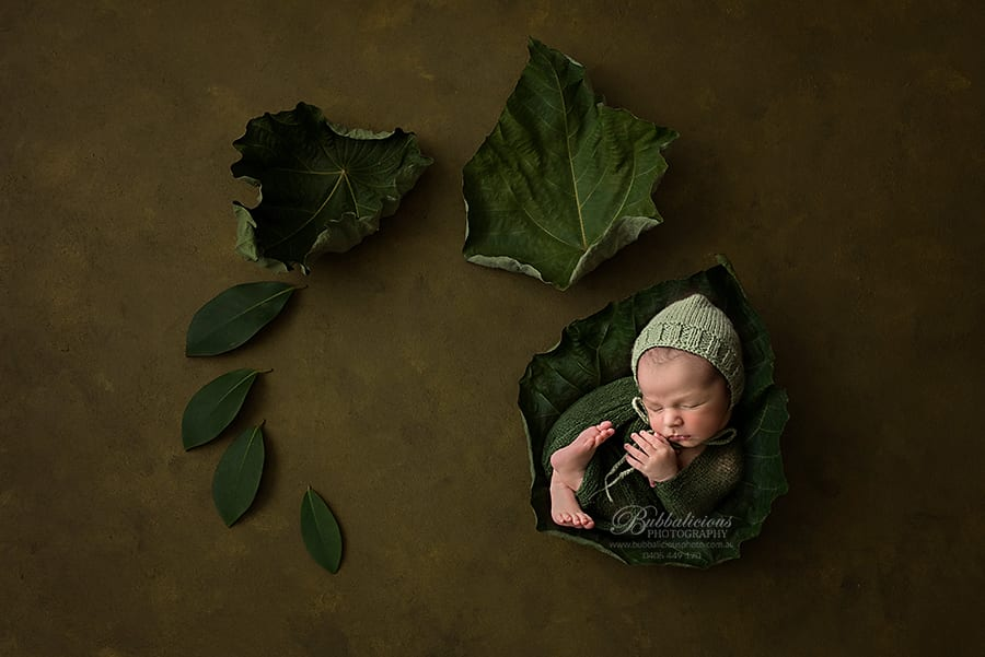 Newborn posed elf-like in green with big leaves - Sunshine Coast Gympie Newborn Photographer