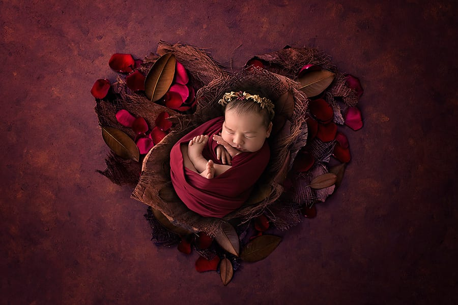 Newborn possed in rustic reds, bark, leaves and flower petals in a heart shape - Sunshine Coast Gympie Newborn Photographer