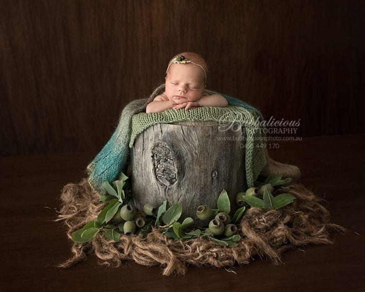 Newborn posed on a rustic stump with gum nuts and leaves - Sunshine Coast Gympie Newborn Photographer