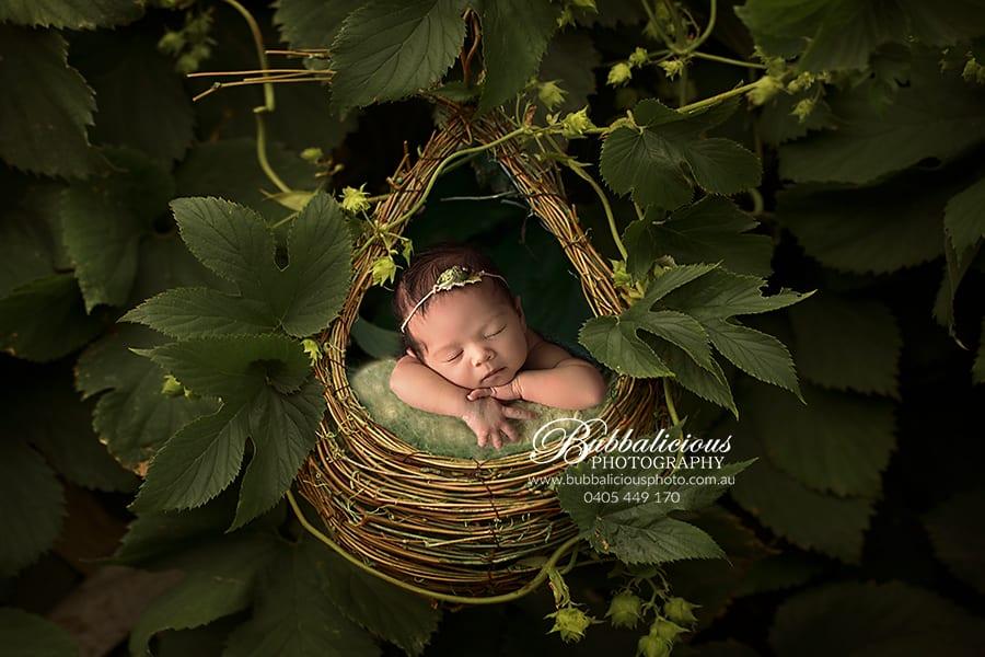 Newborn in nature - Green leaves and a nest - Sunshine Coast Gympie Newborn Photography